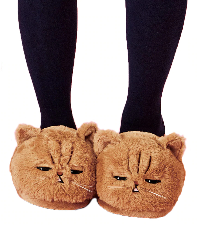 Kitty Cat Slippers